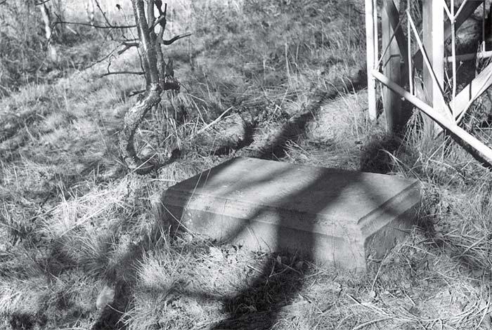 Надгробная плита xix века на кладбище